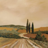 Shady Tuscan Fields