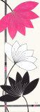 Fuchsia Lotus Blooms