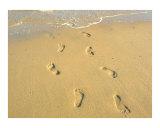 Footprints - Provincetown  Massachusetts