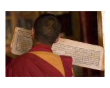 Tibetan Buddhist monk praying and reciting from ancient holy script