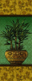Tropical Plants I