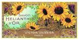 Savon Helianthis d'Or