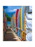 Row of Colorful Surfboards  Waikiki Beach