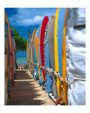 Row of Colorful Surfboards  Waikiki Beach