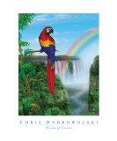 Wonders of Creation - Bird Series I