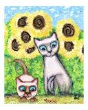 Siamese Caterpillar Cats