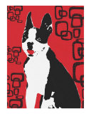 Red Boston Pop Art