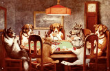 Seven Dogs Playing Poker