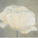 Poppy in White I