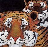 Sun Tigers