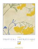 Tropical Impressions I