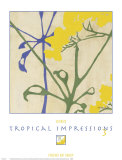 Tropical Impressions III