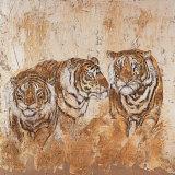 Les Tigres I