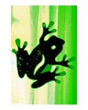 Green jumpin Ribbit