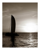 Sepia Sailboat in Key West
