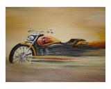 Fast Harley