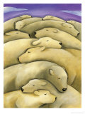 Texture  Sleeping Polar Bears