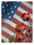 Poppies and American Flag
