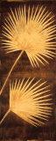 Fan Palm Triptych III