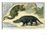 An Iguanodon and a Megalosaurus of the Cretacean Era