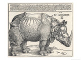The Indian Rhinoceros is the Largest of the Asian Spiecies Giclée premium par Albrecht Dürer