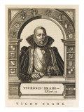 Tycho Brahe Danish Astronomer