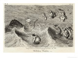 Witches Frolicking in the Waves