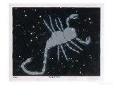 The Constellation of Scorpio the Scorpion