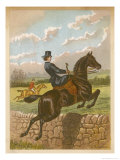 Lady Jumping a Wall Side Saddle on a Brown Horse