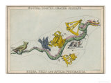Hydra Constellation Including an Owl a Raven and a Sextant
