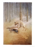 """Young Indian Encounters His Totem Spirit """"Utonagan"""" in the Form of a She-Wolf"""