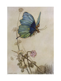 He Rides on the Back of a Butterfly Giclée premium par Warwick Goble