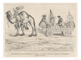 The Camel-Drawn Travelling Organ of Hans Hoffhaimer Organist to the Emperor Maximilian 1st