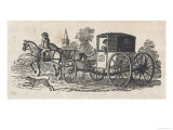 Dalmatian Coach Dog Guarding a Carriage