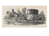 Dalmatian Coach Dog Guarding a Carriage