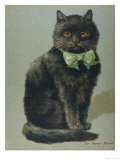 Handsome Black Cat Sir Thomas Mouser Sits Posed with a Green Ribbon Around His Neck