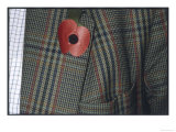 Remembrance Poppy on the Lapel of a Tweed Jacket