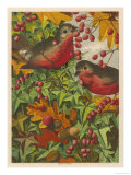 Two Robins Among Berries