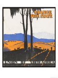 Orange Free State