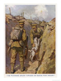 Private Brown of the North Staffordshires in the Trenches in France is Found by His Terrier