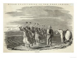 Slaves Working on a Sugar Plantation Jamaica West Indies