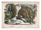 In a Snowy Wood the Bear Successfully Hunts Down the Hunter
