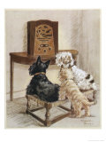 Three Dogs Enjoy a Radio Broadcast