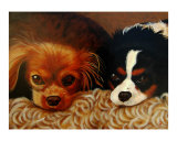 Portrait of two King Charles Spaniels