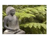 Stone meditating Buddha statue with greenery