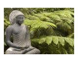Stone meditating Buddha statue with greenery