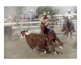 Cutting Horse Cowboy