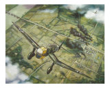 JU-87 Stuka (Blitzkrieg 1940}