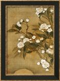 Pear Blossom and Moon Reproduction encadrée par Yun Shouping
