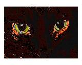Cat Eyes 7